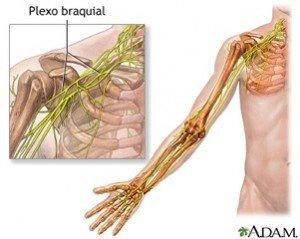 dolor-hombro-brazo-codo-300x239