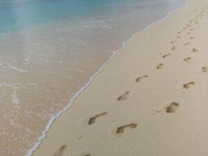 playa paseo